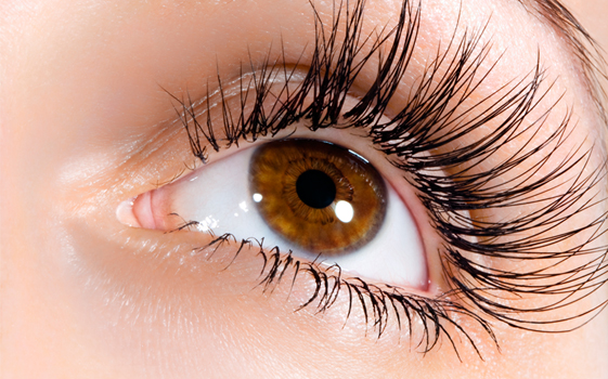 Eyelash tinting and application of cluster lashes